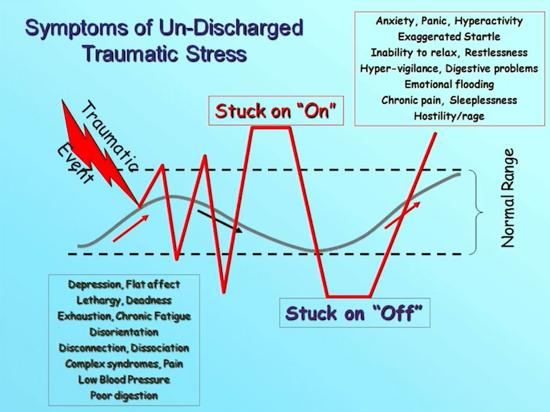 Fight, Flight, or Freeze — Releasing Organizational Trauma - Matty Stratton - REdeploy 2018 - Undischarged Stress